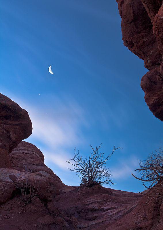 Garden Of The Gods,Colorado,moon,venus, USA