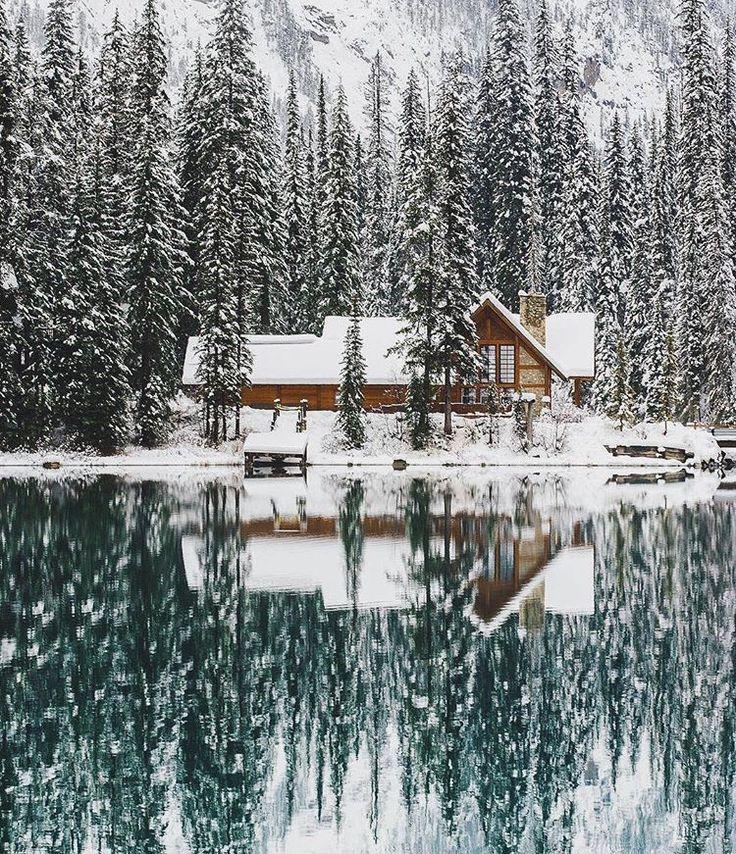 Is this heaven on earth??! #winterwonderland #winterforest