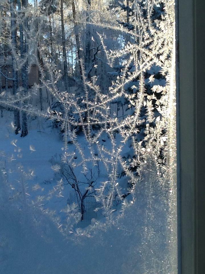 kuistin ikkunan jääkukkia, niin hauraita ja kauniita.