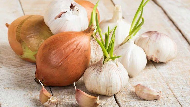 Sipuleita on helppo kasvattaa itse.  Copyright: Shutterstock. Kuva: Shutterstock.
