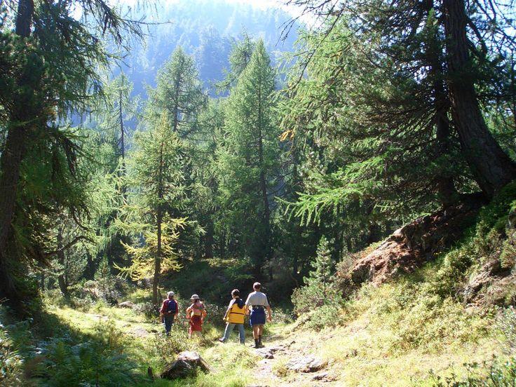 Wanderung im Nationalpark als Alternativprogramm