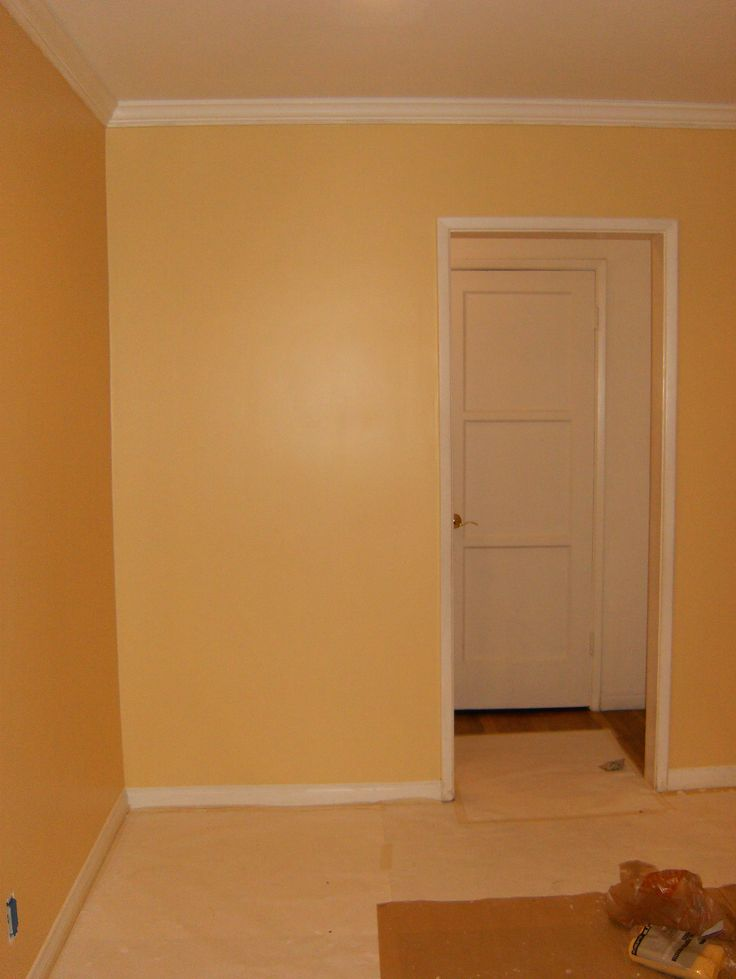 103 best paint colors i for Behr paint colors interior yellow