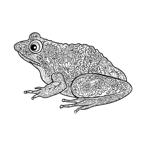 free frog adult coloring page