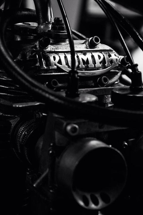 >stunning photograph of a triumph motorcycle part <3 <3 <3                                                                                                                                                     More