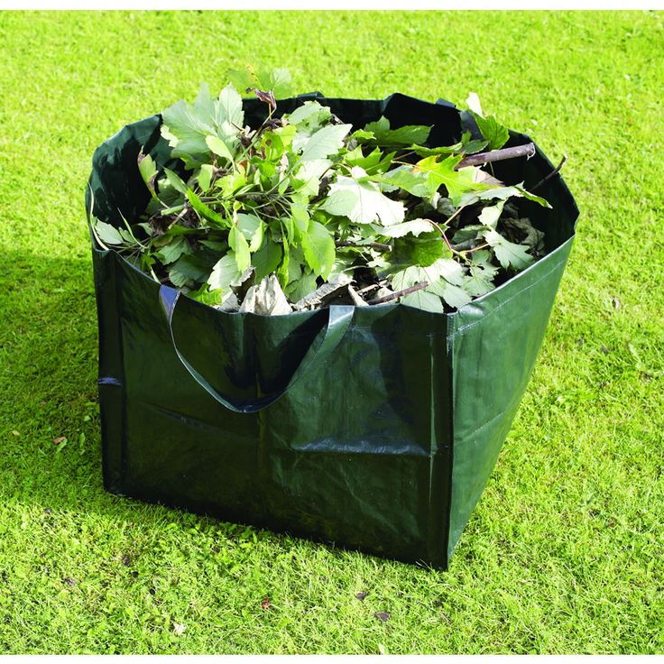 57 mejores imágenes de Wilko | Spring Gardening en Pinterest ...