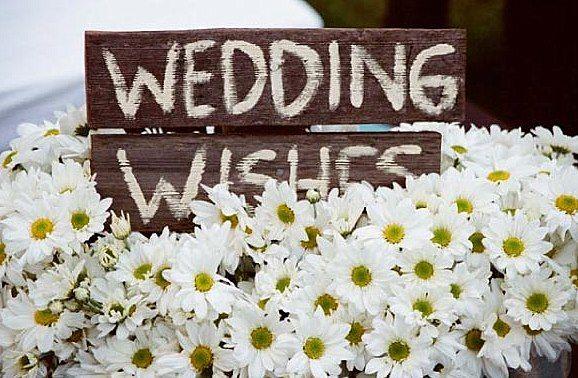 wedding design: Wedding, Wedding Wishes, Wedding Ideas, Weddings, Daisies, Daisy, Guest Book, Flower