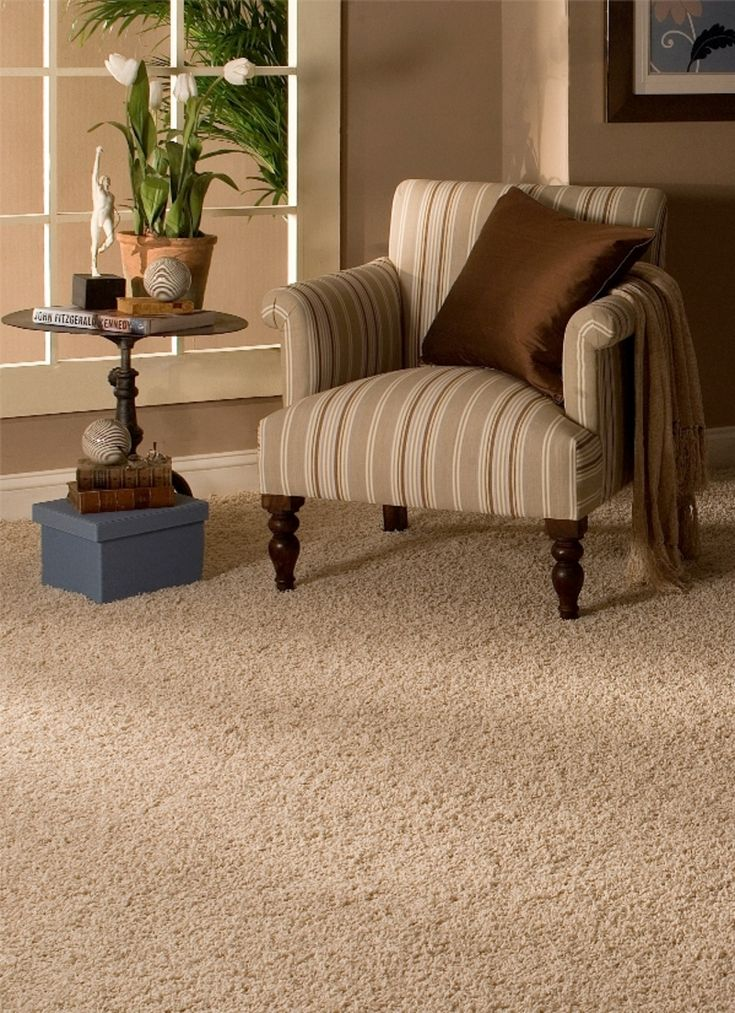 Professional Carpet Cleaning And Sanitizing London. How The Carpets Could  Look Like New?