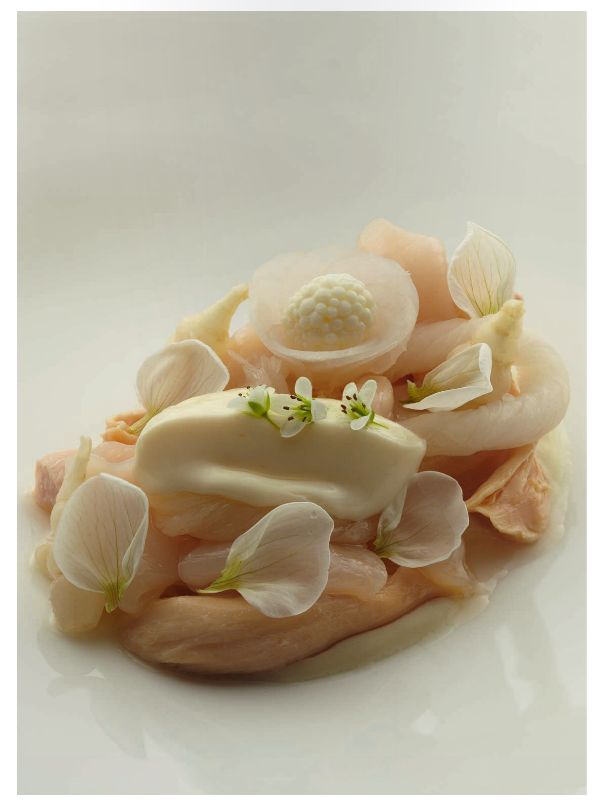 poached chicken recipe will still be popular in 2016