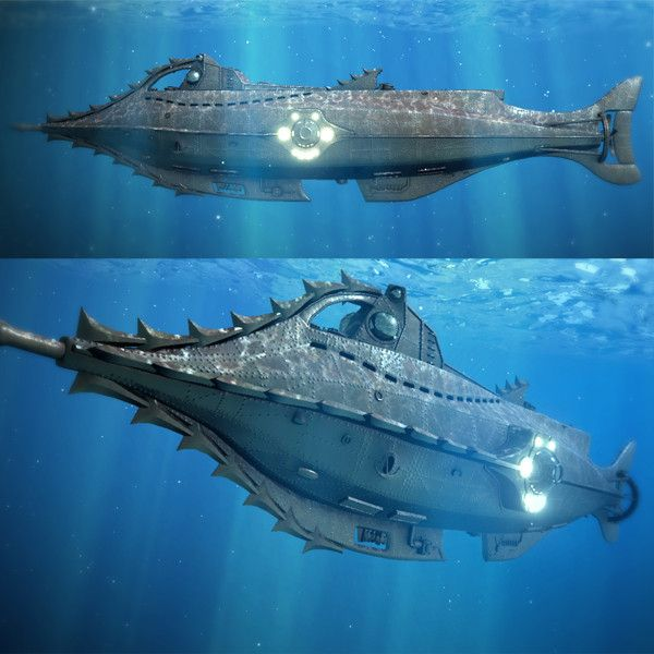 17 best images about nautilus on pinterest models brad for Nautilus garden designs