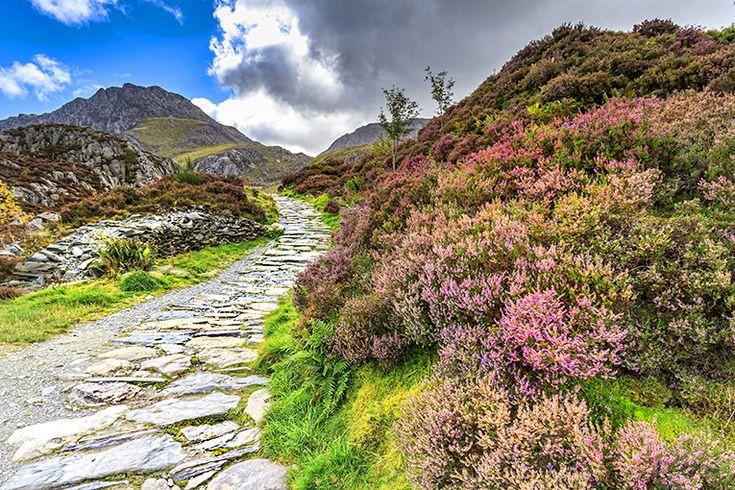 Wales, Storbritannien