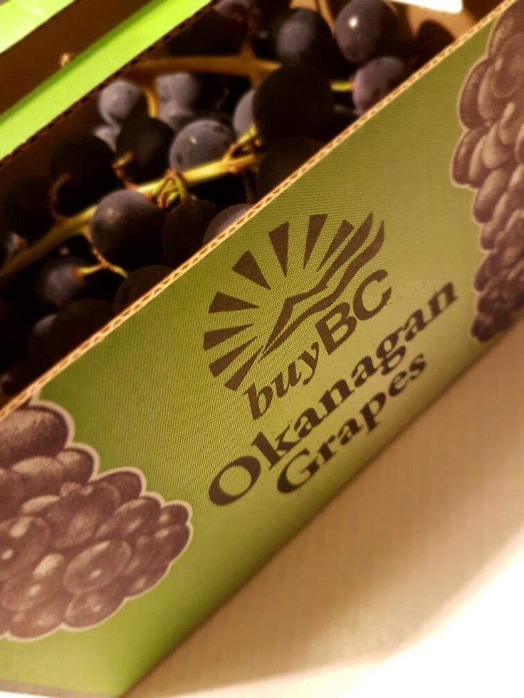 Best grapes ever