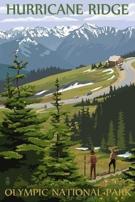 Hurricane Ridge, Olympic National Park, Washington - Lantern Press Poster