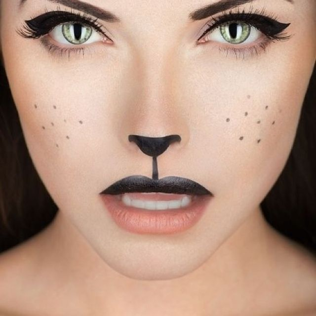 Costume makeup for a cat.  Simple and quick.  #makeup #costume #ideas