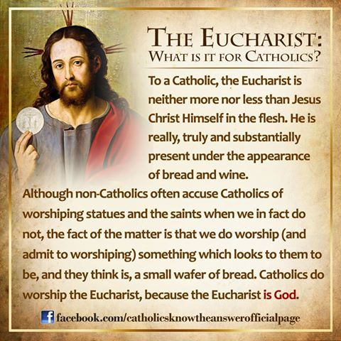 eucharist                                                                                                                                                                                 More