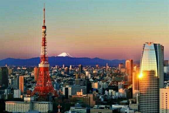 The city that never sleeps. Fly to #tokyo $462 with @Jetstarairways. For more visit www.flightfinderau.com #travel