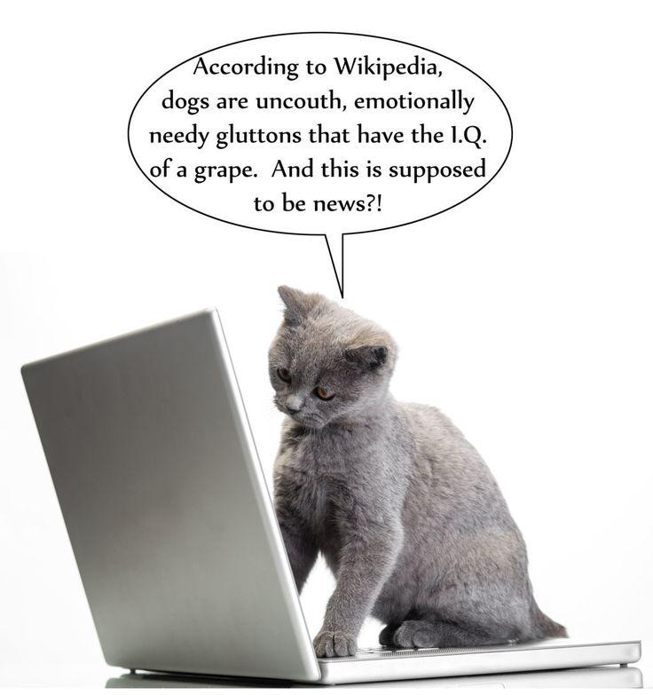 14 besten Pets and Computers Bilder auf Pinterest | Computer ...