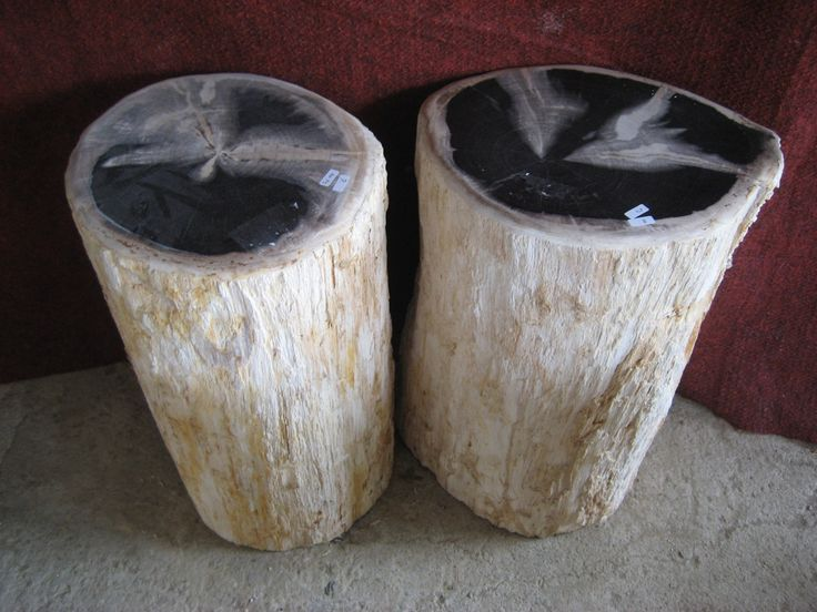 Petrified Wood for sale. The rough stone material we use to make the Petrified Wood products from is fossil tree stumps and logs. These fossilized tree remna...