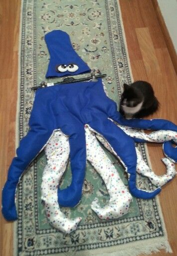 octopus costume for boy#costume carnevale da polpo# party#boy#cute#♡♡♡♡