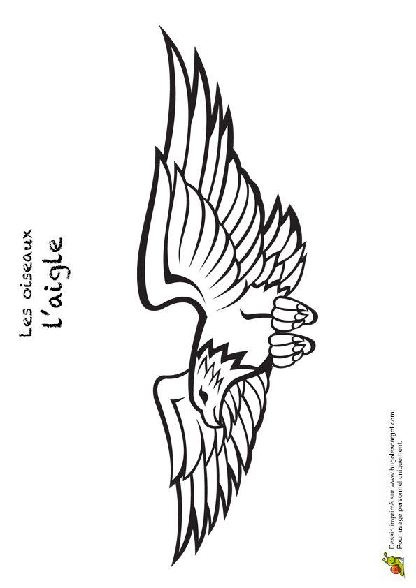 Les 110 meilleures images du tableau coloriages d 39 oiseaux sur pinterest legende coloriages et - Dessin d aigle royal ...