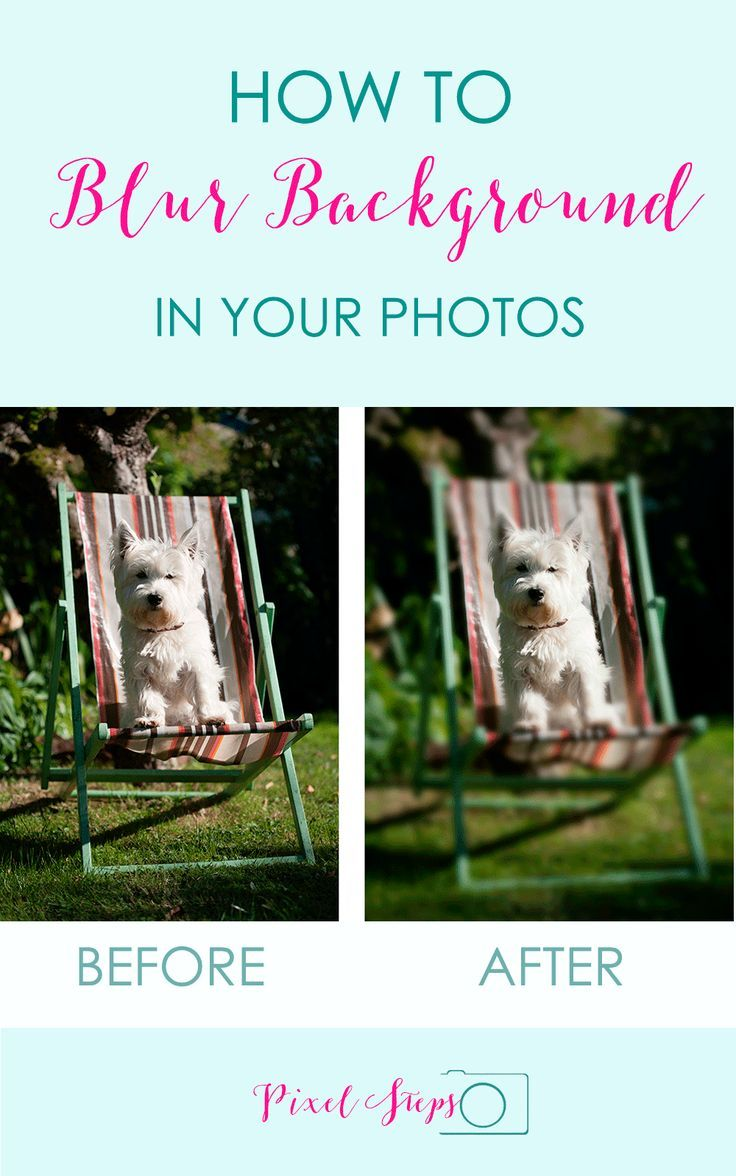 Photography tips - Blur Background technique tutorial | Learn how to do this in free photo editors