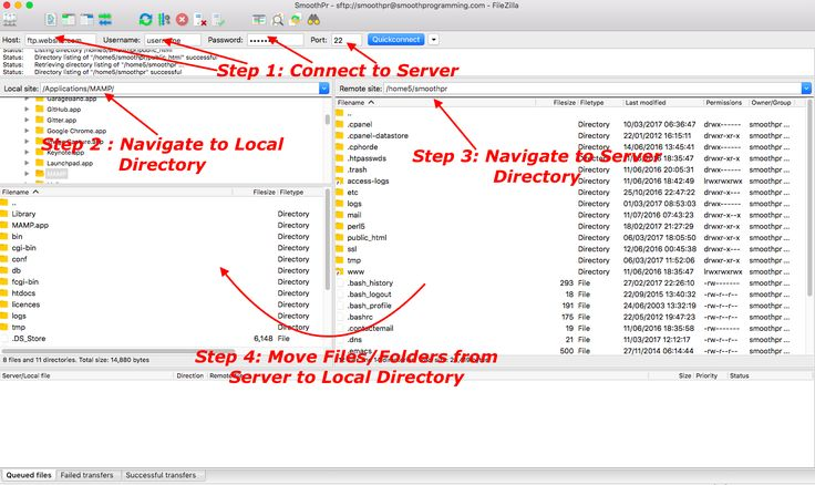 Transfer Files using FileZilla.