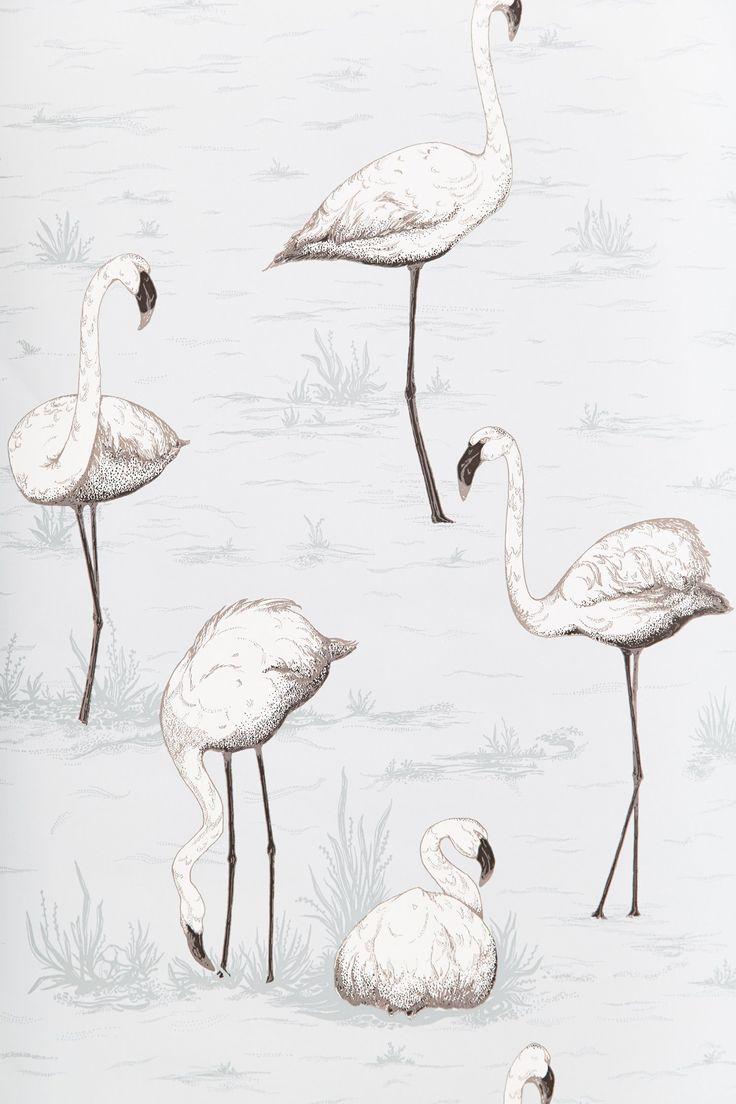Background flamingo flamingos iphone wallpaper wallpaper - White Flamingo Wallpaper Via Anthropologie