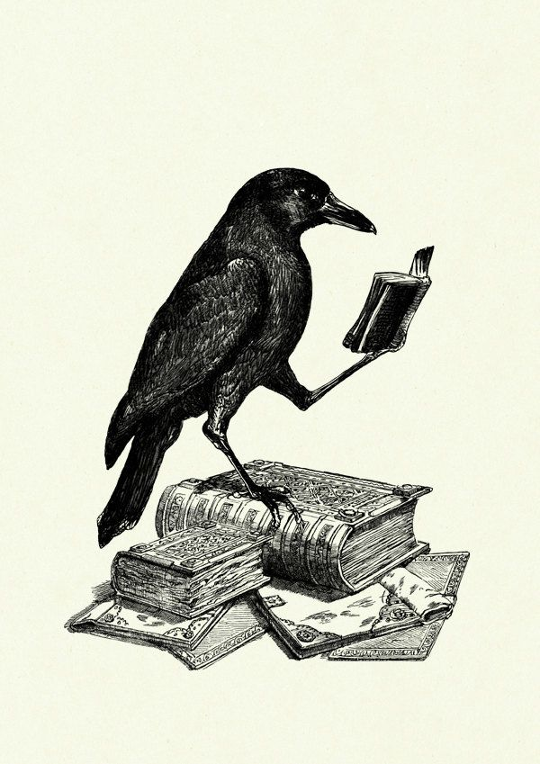 Halloween Raven Crow reading a Book Edgar Allan Poe