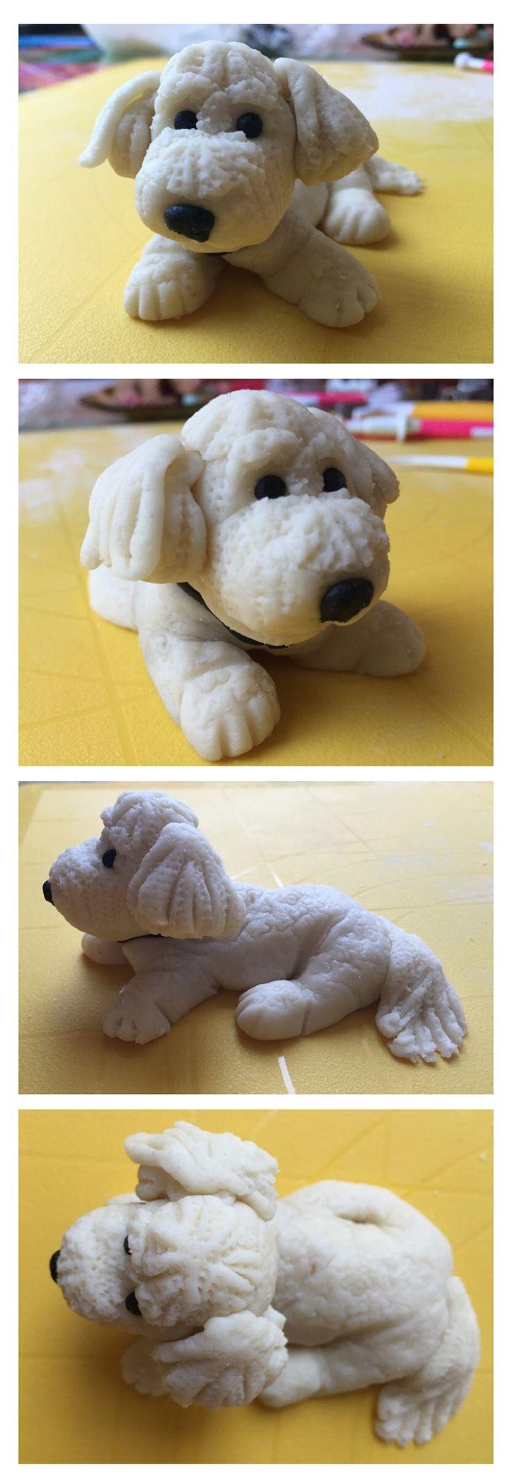 Marzipan bolognese dog