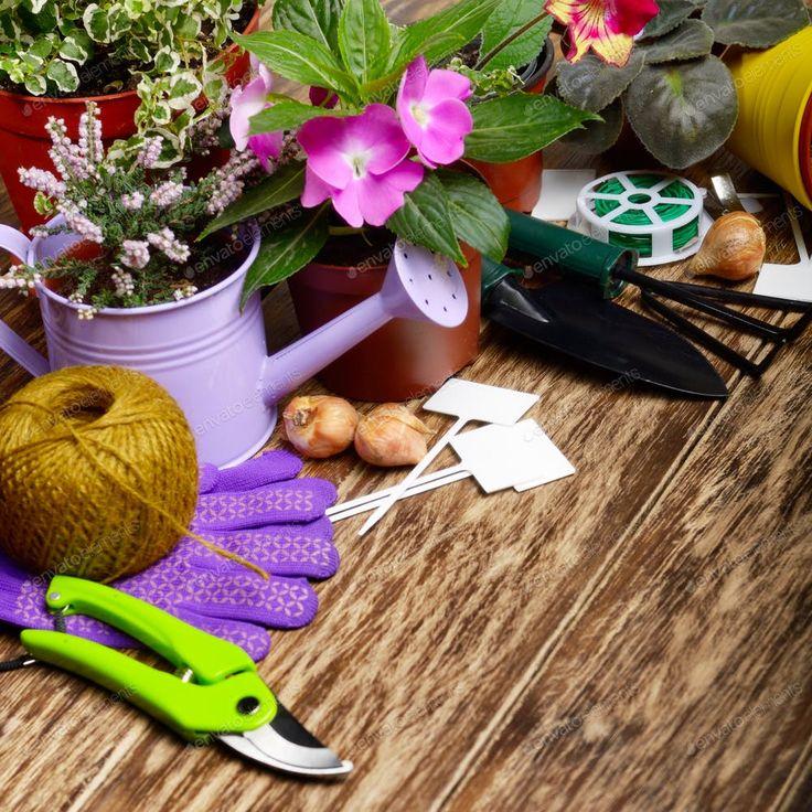 Картинки по теме хобби садоводство