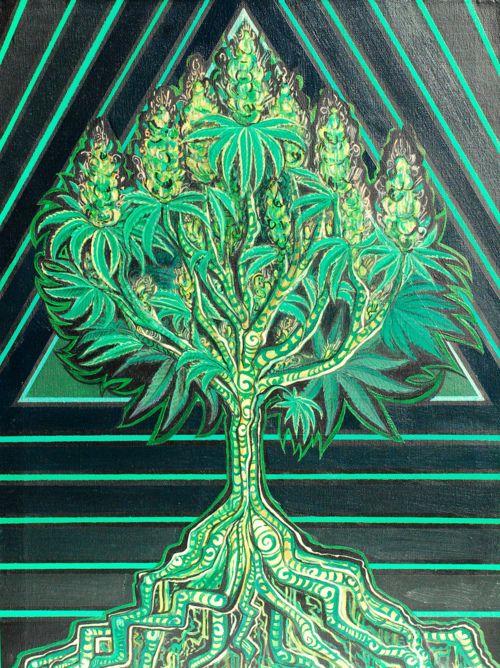 sweet tree of life  #bud #ganja #reefer #Chronic #kush #hydro #skunk #dope #grass #haze #smoke #herb #trees #cannibis #ifweedwerelegal #legalizeit #weed #pot #hemp #marijuana #stonerfamily #0Deaths #toohigh #legalize #MMOT #mmj #norml #maryjane