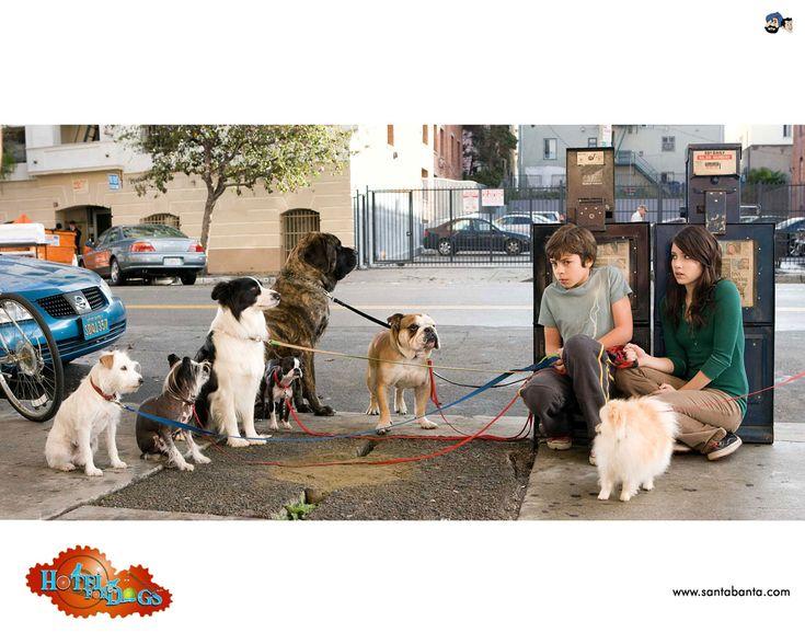 les 35 meilleures images du tableau hotel for dogs. Black Bedroom Furniture Sets. Home Design Ideas