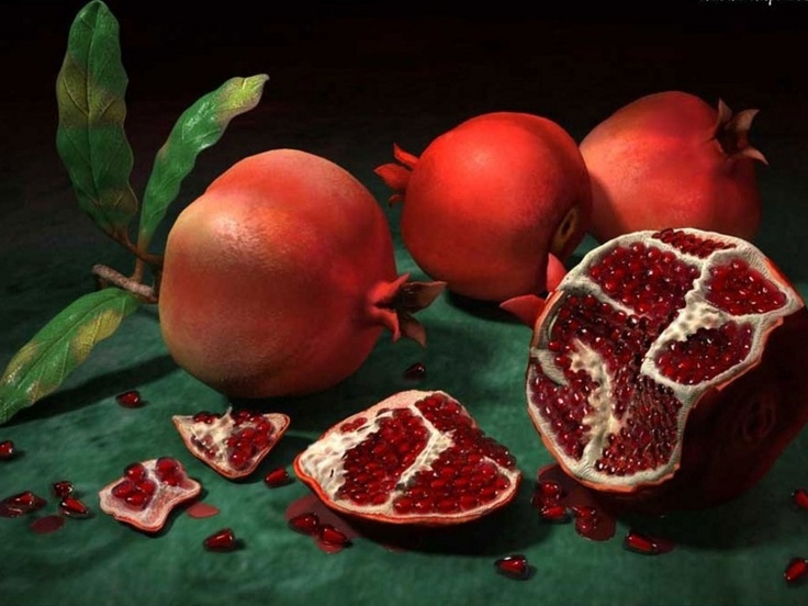 84 best images about Art - Pomegranate Illustrations on ... Persian Pomegranate Trees For Sale
