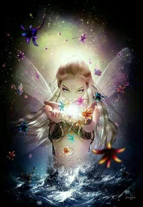 Fairy Magic                                                                                                                                                                                 More