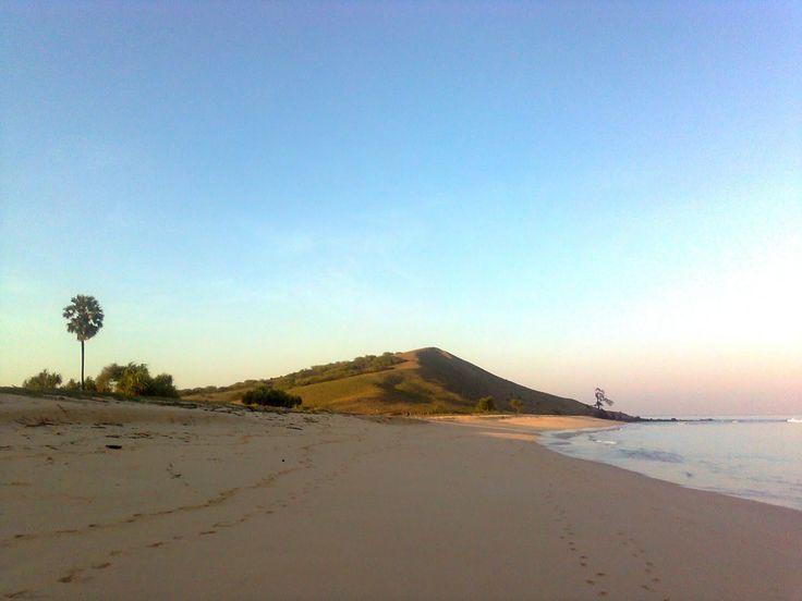 Pulau Semau Melihat Barisan Pantai yang Memukau di Nusa Tenggara Timur - Nusa Tenggara Timur