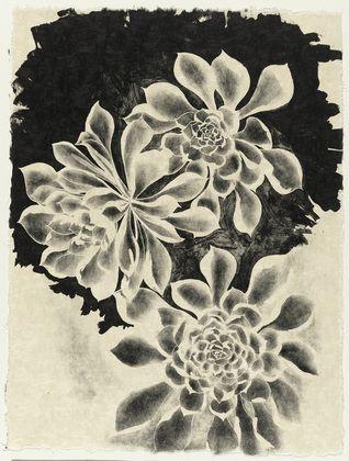 Ruth Asawa. Succulents. 1965