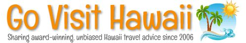 Long-haul flight tips to/from Hawaii: What to bring on the plane to make the flight pleasant | Go Visit Hawaii