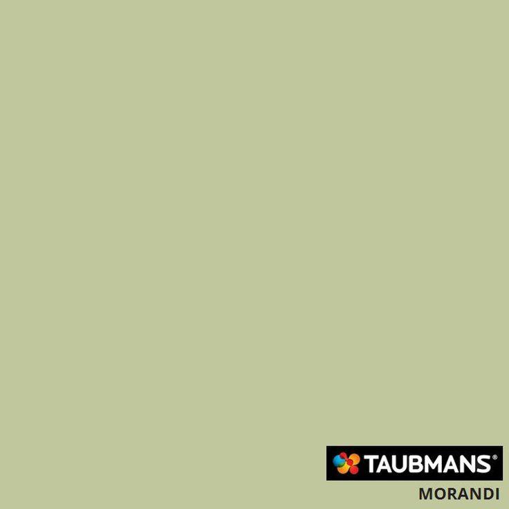 #Taubmanscolour #morandi