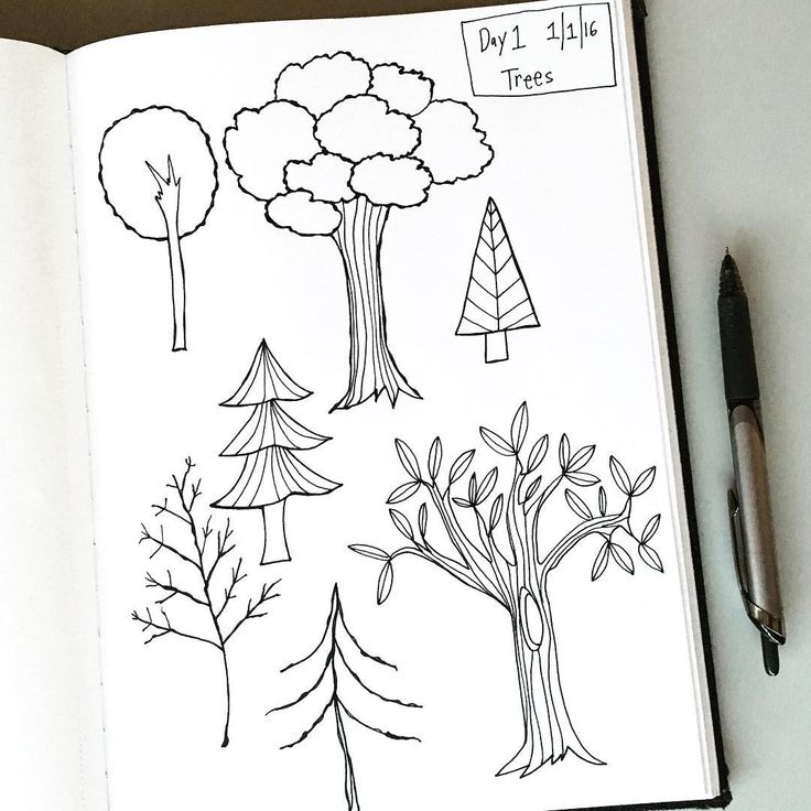 17 best images about draw something now on pinterest for Things to practice drawing