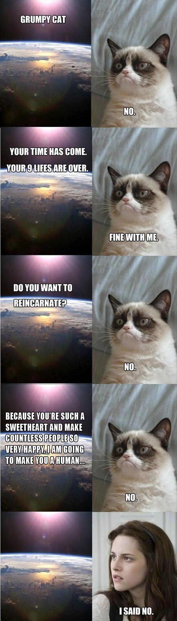 I don't normally post these, but this one os great!!!!! grumpy cat is made into kristen Stewart.