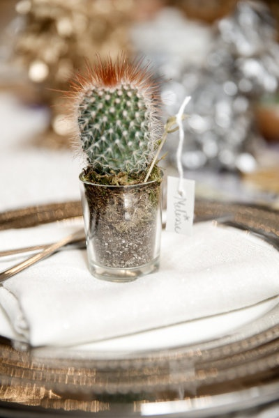 Cactus favors for a Cinco de Mayo dinner party Photography by http://www.torywilliams.com/ | Design and Styling by http://matthewrobbinsdesign.com/