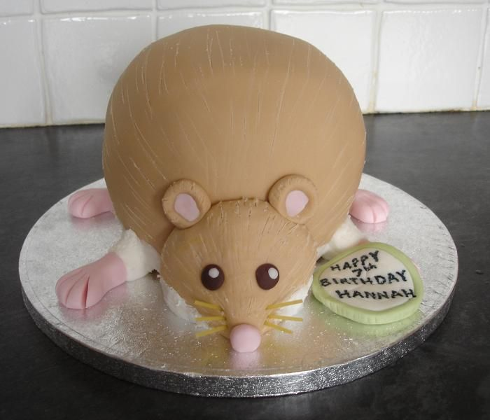 hamster cake | Pin Hamster — Animal Cake on Pinterest