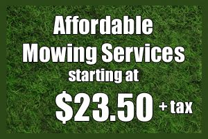 lawn mowing services prices