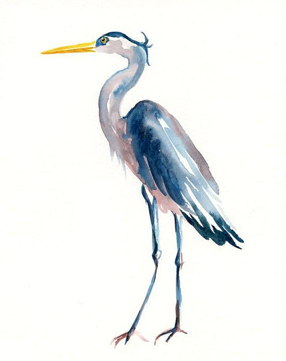 blue heron watercolor art | GREAT blue HERON by DIMDI Original watercolor painting 8x10inchxxxxAll ...