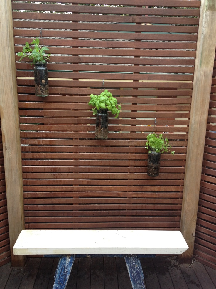 Our hanging herb garden