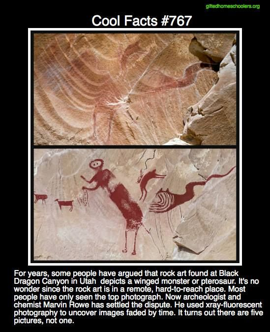 Cool facts #767  http://news.sciencemag.org/paleontology/2015/08/winged-monster-ancient-rock-art-debunked-scientists