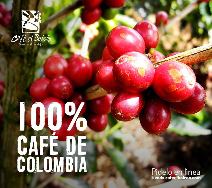 Comienza esta semana con el mejor café. Pídelo en línea tienda.cafeelbalcon.com #mejorunbuencafe #cafeelbalcon #cafecolombiano #antioquia