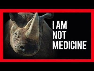 poaching endangered species and wildlife service