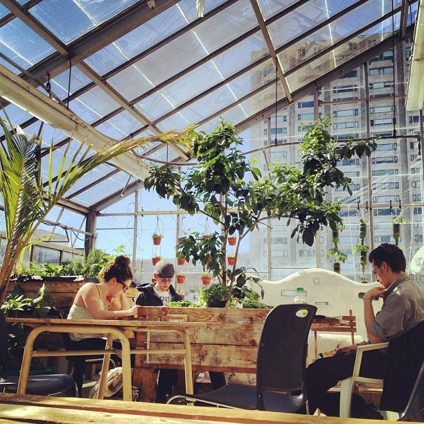 Concordia University's rooftop greenhouse - Montreal
