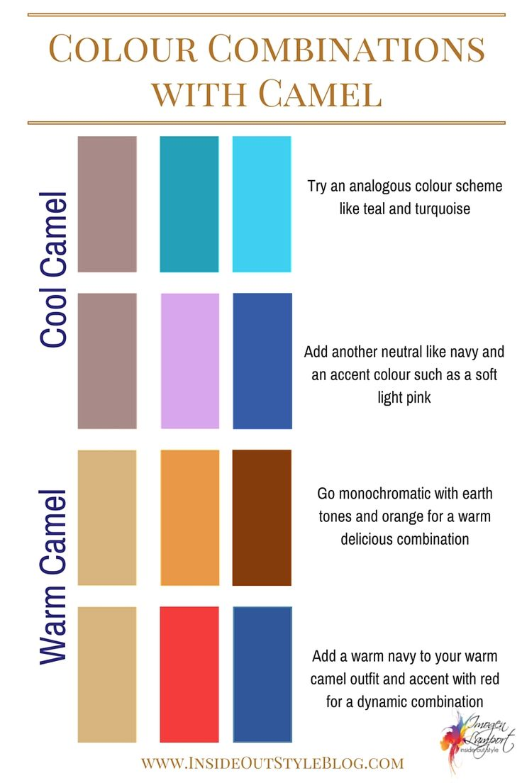 How to combine camel with colours and how to choose between a warm and cool camel
