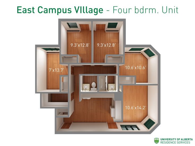 Floorplan with dimensions for four-bedroom units in East Campus Village.